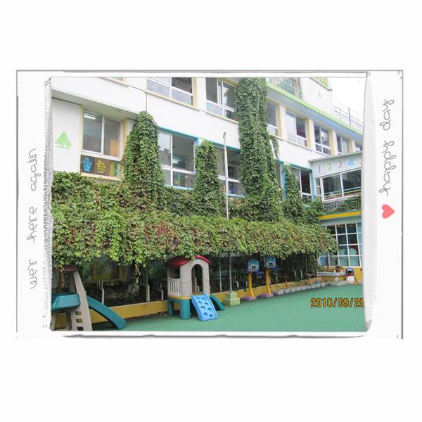 南京大地幼儿园_首页